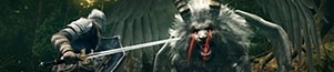 PC - Dark Souls 2 Cheats and Trainers cheats