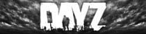 DayZ Review for PC