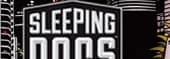 Sleeping Dogs Savegame