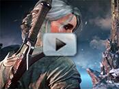 The Witcher 3: Wild Hunt Trainer Video