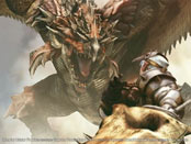 Monster Hunter Freedom Wallpapers