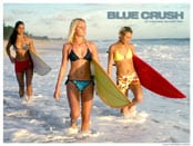 Blue Crush Wallpapers