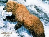 Grizzly Man, The Wallpapers