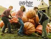 Harry Potter & The Prisoner of Azkaban Wallpapers
