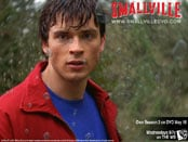 Smallville: Season Three Wallpapers