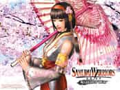 Samurai Warriors: State of War Wallpapers